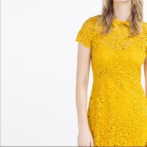 Zara Yellow A-line Lace Dress Medium.